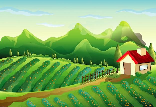 Gospodarstwo w scenie przyrody z małym domkiem i zielonym gospodarstwem
