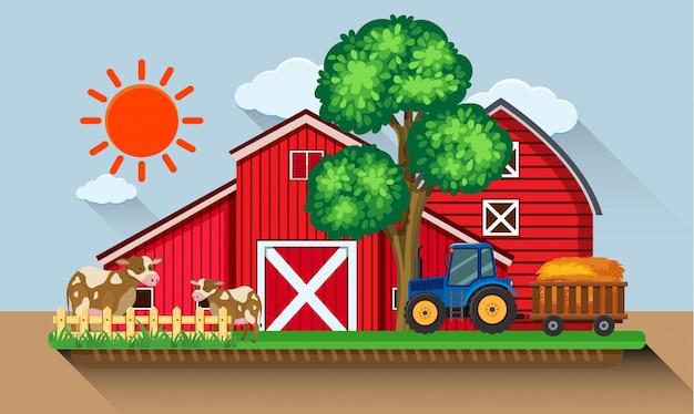 Gospodarstwo z krowy i niebieski traktor
