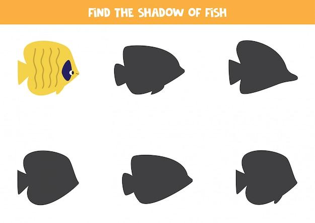Gra edukacyjna dla dzieci. znajdź odpowiedni cień żółtej ryby.