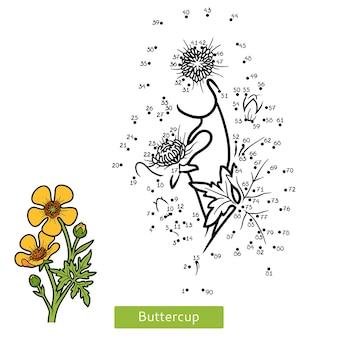 Gra liczbowa, edukacja kropka-kropka dla dzieci, kwiat jaskier