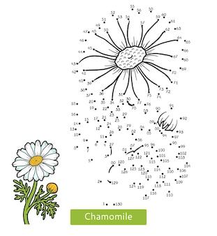 Gra liczbowa, edukacja kropka-kropka dla dzieci, kwiat rumianku