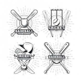 Gracz baseballu i krykieta