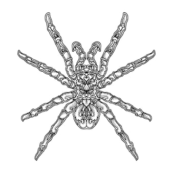 Grafika ilustracyjna i projekt pająka