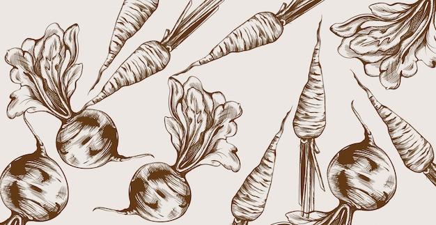 Grafika liniowa buraków i marchwi. warzywa wzór świeżych zbiorów