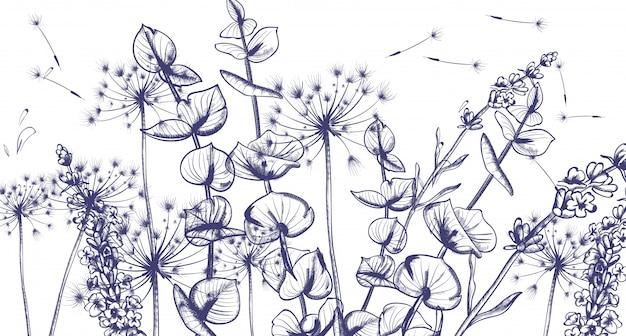 Grafika liniowa letnich kwiatów lawendy