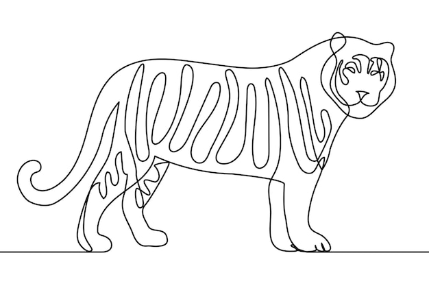Grafika liniowa stojąca tygrys nowoczesny styl wektor illustraion jedna linia rysunek ręka