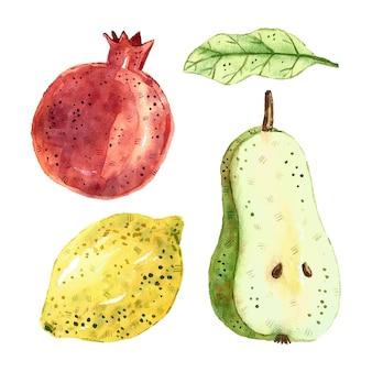 Granat, gruszka, liść, cytryna. tropikalne owoce clipart, zestaw. akwarela ilustracja. surowe, świeże, zdrowe jedzenie. wegańskie, wegetariańskie. lato.