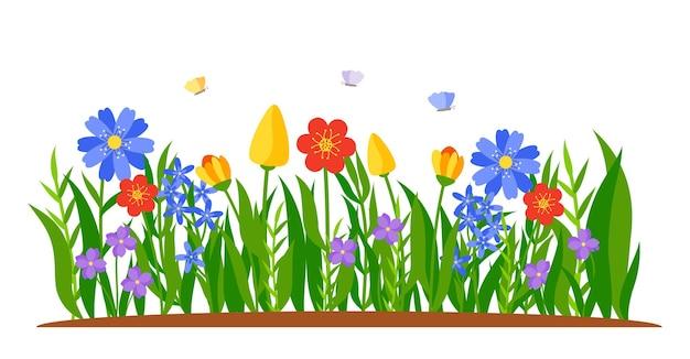 Granica kwiatów rosnących w trawie, wiosenne tulipany, żonkile lub stokrotki w stylu płaskiej kreskówki