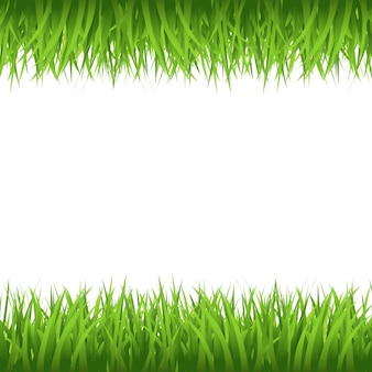 Granica trawy