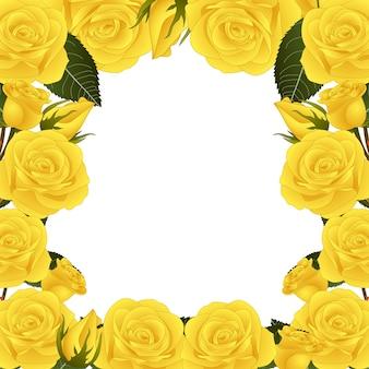 Granica żółty kwiat róży