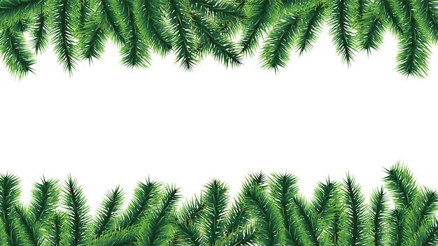 Granicy choinki. gałęzie jodły na białym tle. ilustracja gałąź wiecznie zielone ramki, gałązka sosny xmas