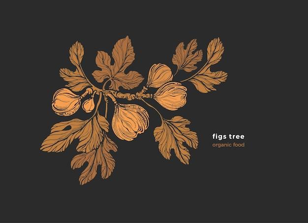 Grawerowana roślina figi na czarno
