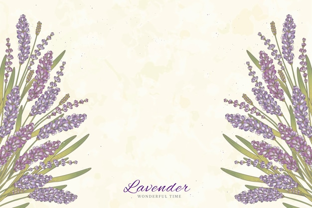 Grawerowane kwiaty lawendy na beżowym tle z miejsca na kopię