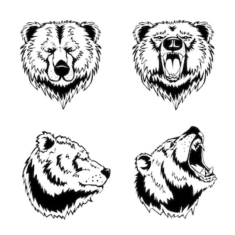 Grawerowane ręcznie rysunki głowy niedźwiedzia