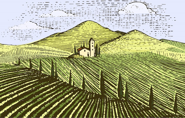 Grawerowane w stylu vintage, ręcznie rysowane krajobraz winnic, pola tuskany, stara tablica do rysowania