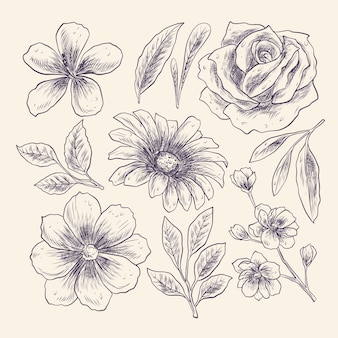 Grawerowanie ręcznie rysowane kolekcji kwiatów