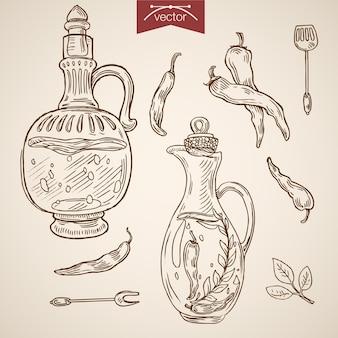 Grawerowanie rocznika ręcznie rysowane oliwa z oliwek, sos, kolekcja przypraw.