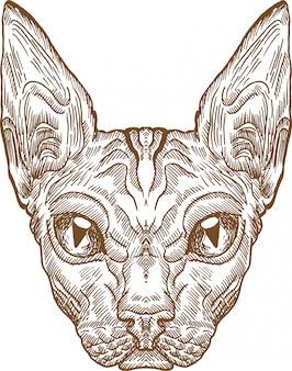 Grawerowanie rysunek głowy kota