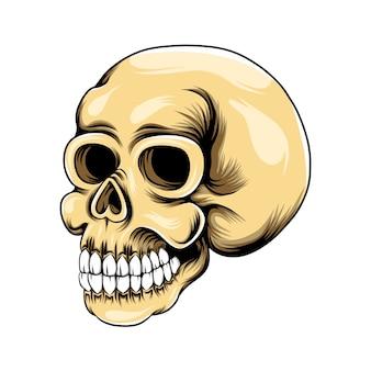Grunge głowa czaszka z zębami dla inspiracji logo