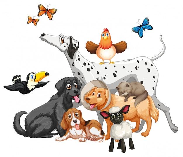 Grupa cute zwierząt postać z kreskówki na białym tle