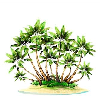 Grupa drzew palmowych na wyspie