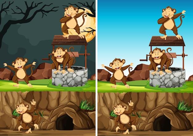 Grupa dzikich małp w wielu pozach w stylu cartoon park zwierząt na białym tle na tle dnia i nocy