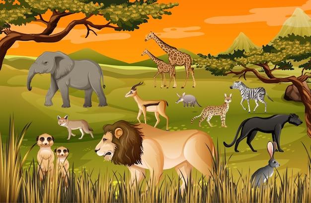 Grupa dzikich zwierząt afrykańskich na scenie lasu
