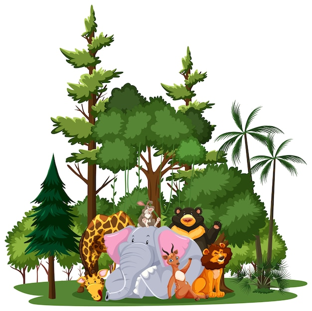 Grupa dzikich zwierząt lub zoo z elementami przyrody na białym tle