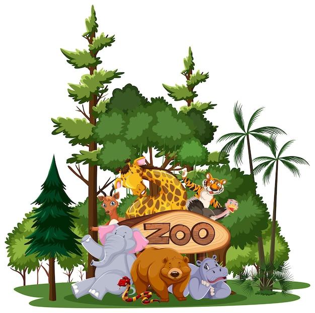 Grupa dzikich zwierząt lub zoo z elementami przyrody