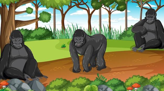 Grupa goryli mieszka w lesie lub lesie deszczowym z wieloma drzewami