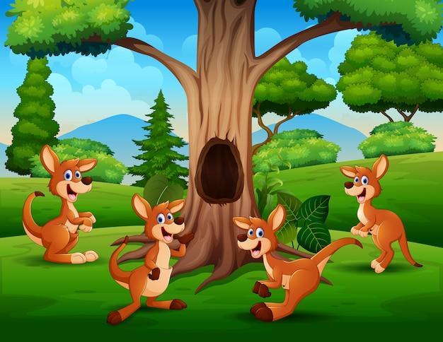 Grupa kangurów grających pod drzewem