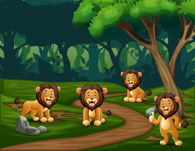 Grupa lwów cieszących się w lesie