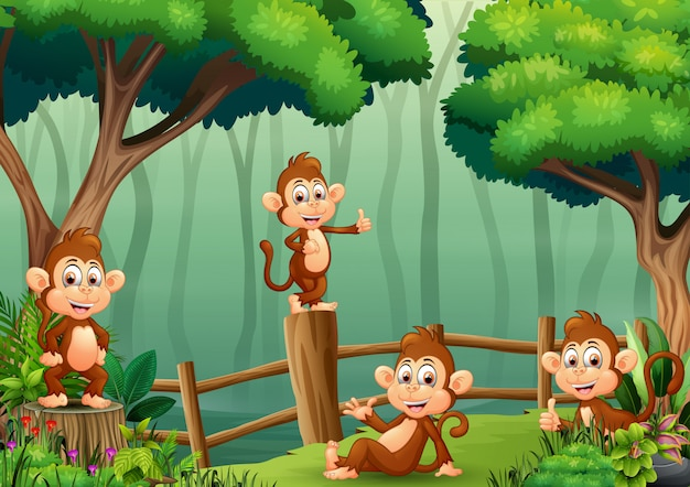 Grupa małp wewnątrz drewnianego ogrodzenia