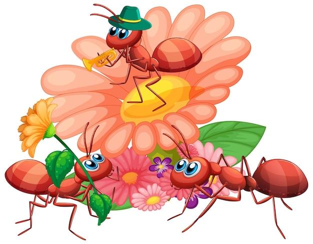 Grupa mrówek i kwiatów
