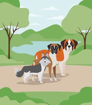 Grupa psów domowych w obozowych postaciach