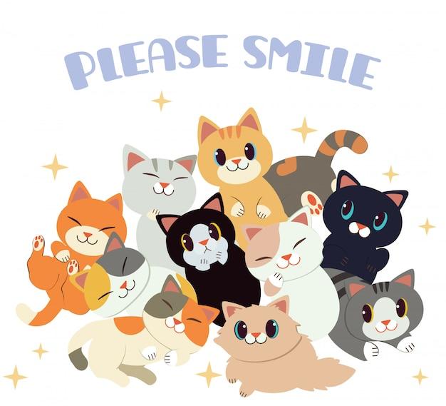 Grupa ślicznego kota i przyjaciół z tekstem proszę uśmiechnij się na białym tle