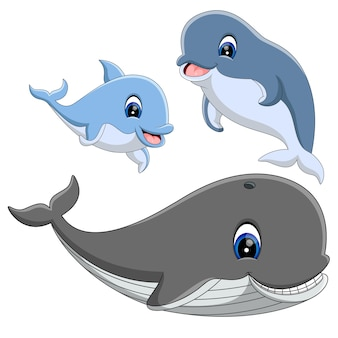 Grupa słodkich kreskówek delfinów i wielorybów