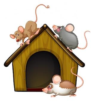 Grupa słodkie myszy z małym domkiem na białym tle