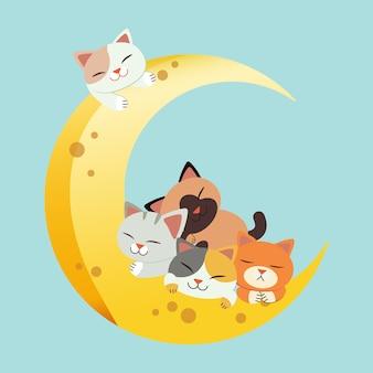 Grupa uroczych kotów chwyta księżyc i śpi