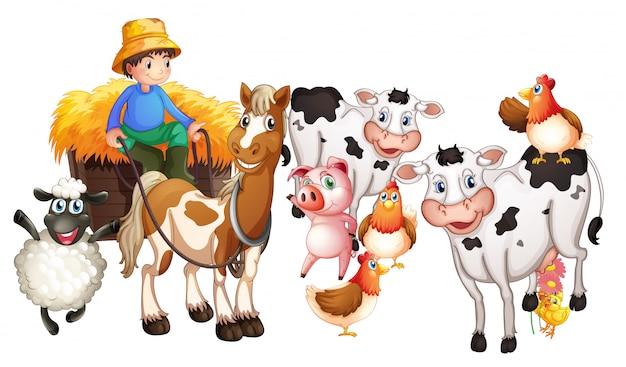 Grupa zwierząt domowych na białym tle