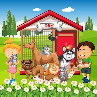 Grupa zwierząt domowych z właścicielem na scenie w parku