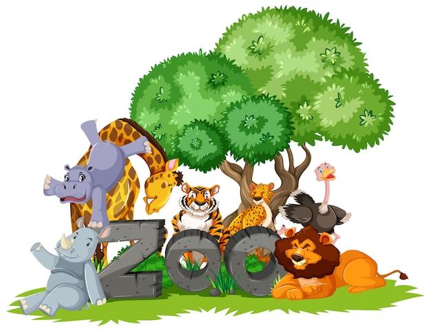 Grupa zwierząt pod drzewem ze znakiem zoo