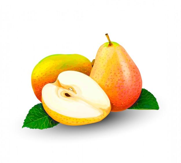 Gruszka cała i plastry., słodkie owoce na białym tle. realistyczne ilustracje wektorowe