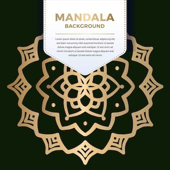 Gwiazda luksusowych ozdobnych mandali wzór w kolorze złotym ilustracja