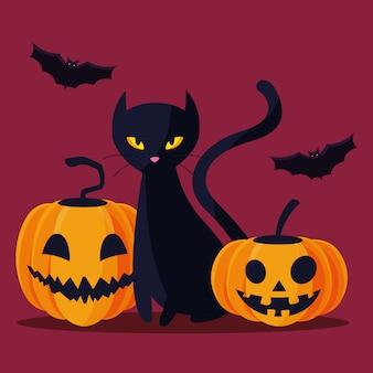 Halloweenowe bajki o kotach i dyniach