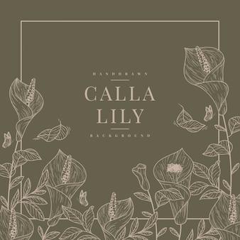 Handdrawn calla lily tło