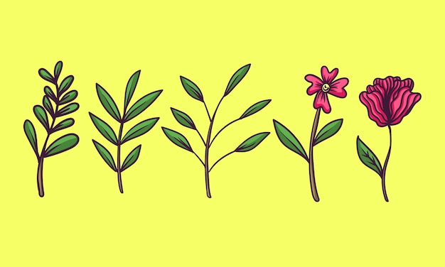 Handdrawn roślin i kwiatów