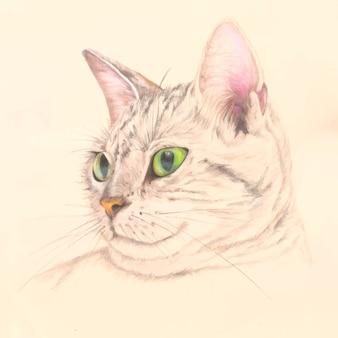 Handrawn cat