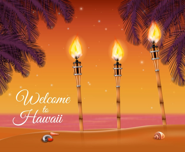 Hawaii beach torch