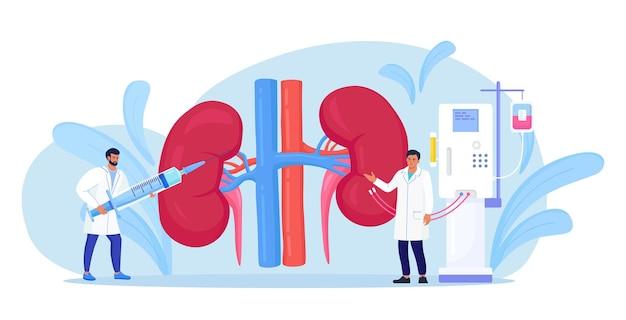 Hemodializa do oczyszczania krwi w przewlekłej niewydolności nerek. mali lekarze leczą, badają nerki. oczyszczanie i transfuzja krwi przez urządzenie do dializy. lekarz prowadzi leczenie choroby nerek